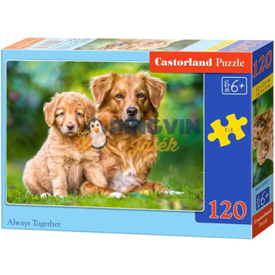 Örökké együtt 120db-os puzzle - Castorland