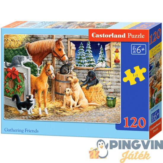 Castorland - Baráti összejövetel 120db-os puzzle (B-13340-1)
