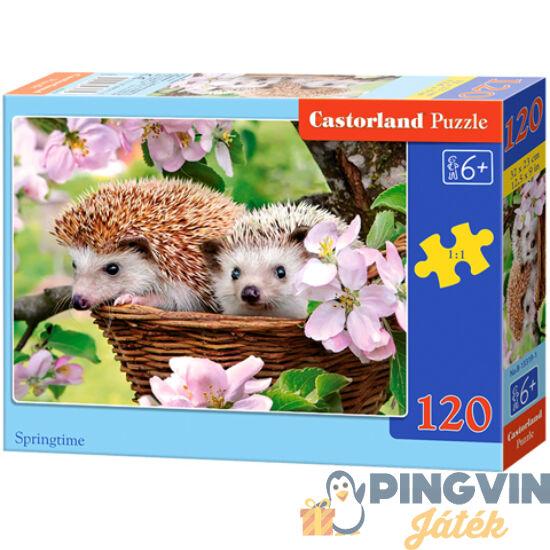 Castorland - Itt a tavasz 120db-os puzzle (B-13319-1)