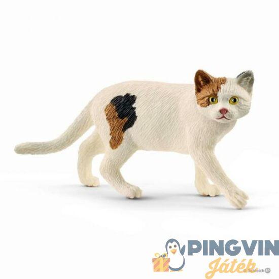 Schleich - Amerikai rövid szőrű macska (S13894)