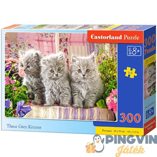 Castorland - Szürke cicás 300db-os puzzle (B-030330)